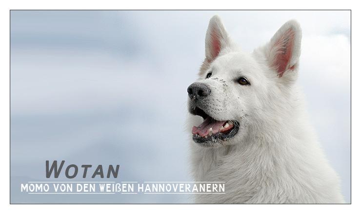 Wotan